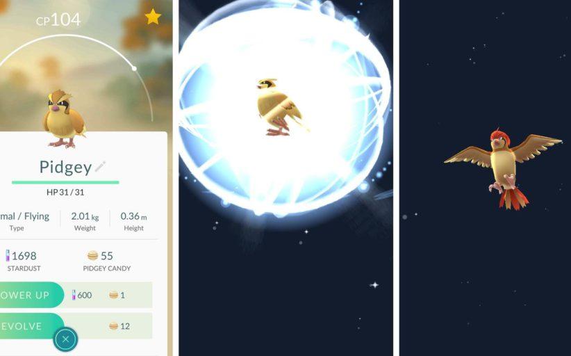 Comment faire évoluer ses Pokémons ?