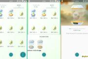 Comment faire éclore les œufs ?